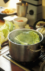 cabbage in cooking pot