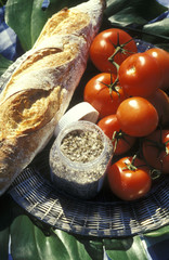 bread, tomatoes and salt, picnic