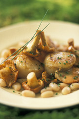 scallops with chanterelles and white kidney beans
