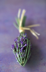arrow-shaped bunch of lavender