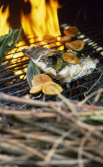 Cod on the barbecue