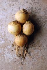 Swedish turnips