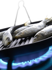 Cooking sardines on a gas cooker