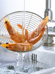 Rinsing shrimps in the sink