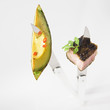 Piece of  pork chop and grilled avocado