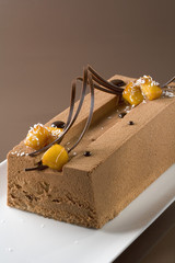 Chocolate and mango ice cream log