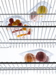 Vegetables and fruit in the refrigerator