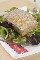 Rabbit terrine with aspic
