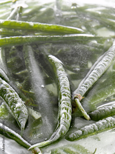 Green beans in ice
