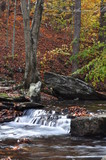 Catoctin Mountain Stream