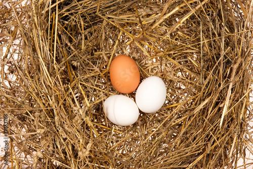 Three eggs on hay