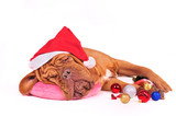 Give Santa a Break !
