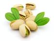 Dreid pistachio