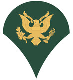 US army specialist insignia poster