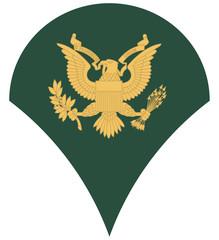 US army specialist insignia