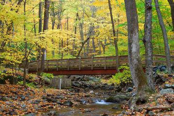 Autumn wood bridge