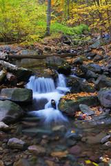 creek closeup