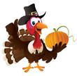 Pilgrim Turkey Holding A Pumpkin