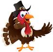 Pilgrim Turkey Standing