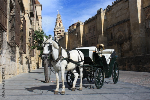 horse-drawn barouche in front of Mezquite in Cordoba