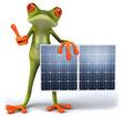 Leinwandbild Motiv Grenouille et panneaux solaires