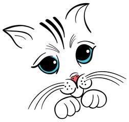 cute little innocent kitty