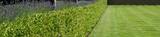 Fototapety landscape gardening