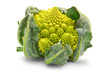 Romanesco broccoli cabbage isolated