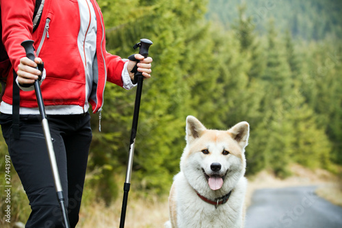 Nordic Walking with dog - 27443917