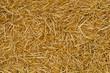 Leinwandbild Motiv Straw texture