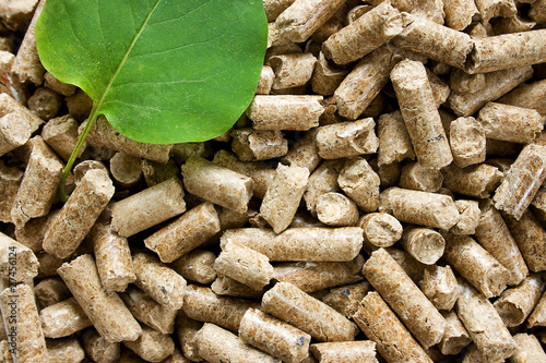 Wood pellets with a green leaf