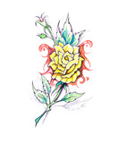 Sketch of tattoo art, flower with tribal design