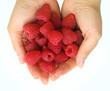 Raspberry on palms