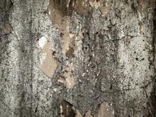 Vieux mur rugueux