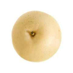 Chinese White Pear (Duck Pear; Ya Pear)