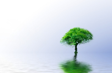 Green Tree - Green ecology concept for your design