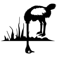 Vogelstrauss Vektorgrafik