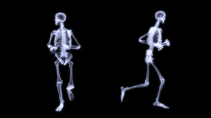 Slow motion radiography of a human skelegon running.