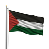 Flag of Palestine waving in the wind in front of white