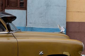 Voiture de mariés Cubaine