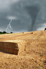 field after threshing with stormy sky