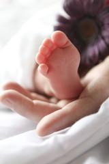 Babyfuesse mit Hand und Blume lila
