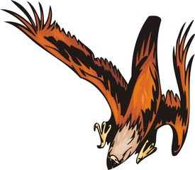 The eagle with orange plumage is going to attack the purpose.