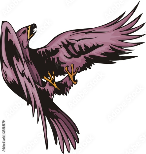 The eagle with violet plumage has entered fight.