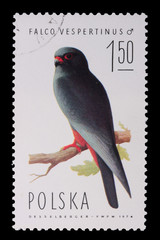 Poland - CIRCA 1974: A stamp - Falco Vespertinus