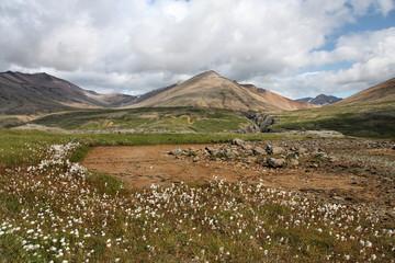 Iceland - Lonsoraefi