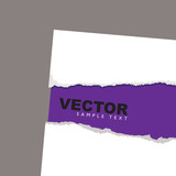 torn paper reveal purple poster