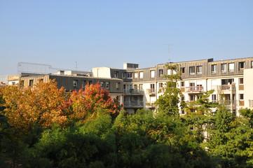 Immeubles et arbres à Paris