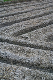 A ploughed Japanese rice field showing intersecting furrows poster