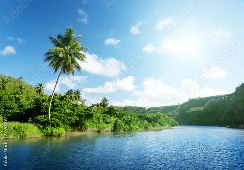 tropischer-fluss